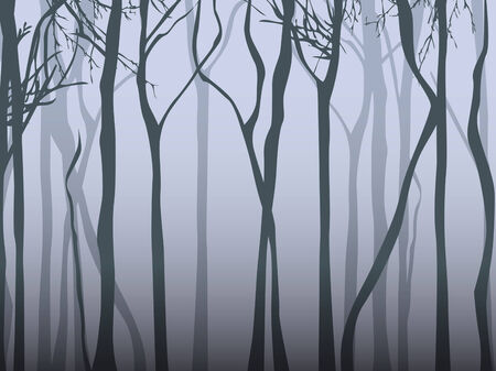 dark forest: Abstract Dark Fog Forest Illustration in Grey Colours Illustration