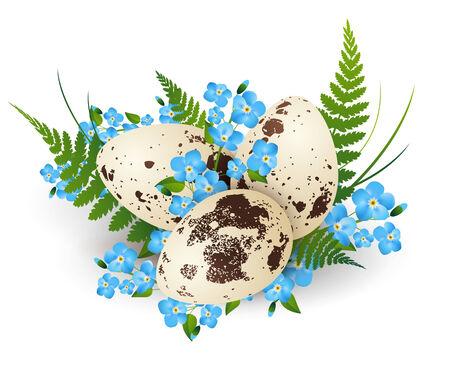 CODORNIZ: Ilustración de Pascua Huevos de Codorniz adornada con helecho y flores de color blanco