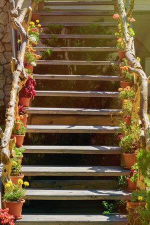 anthesis: Wooden Staircase With Flowers Along The Railing