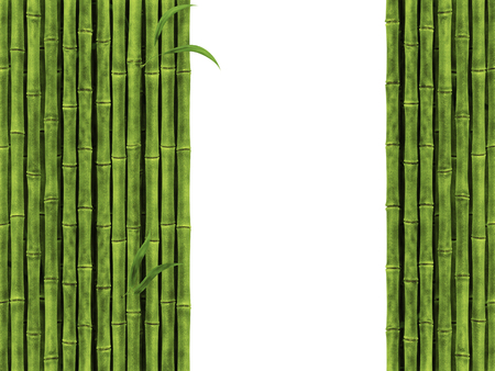bamboo stick: Bamboo Over The White Background Stock Photo