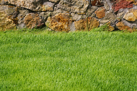 lawn grass: Green Lawn With a Stone Enclosure Stock Photo
