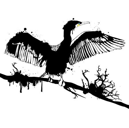 cormorant: Illustration of Grunge Black Hop off Cormorant Over White Background Illustration