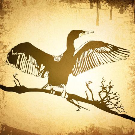 Illustration of Hop off Cormorant Over Grunge Vintage Background Illustration