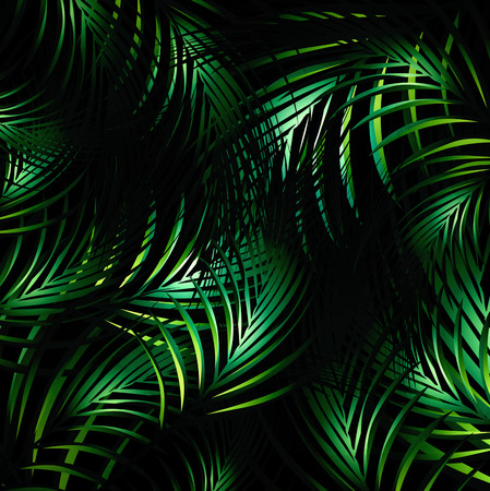 Illustration of Abstract Jungle Palm Leaves Night Background Vectores