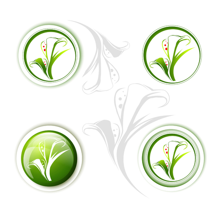 lily flowers collection: Calla Lily Flower Icon Design Collection Over White Illustration