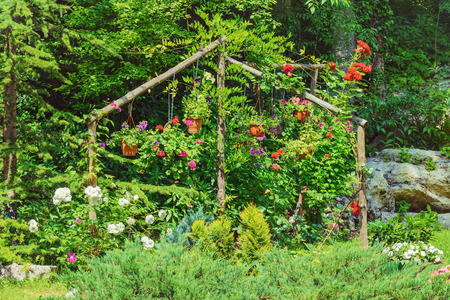 ecological environment: Diferent Kinds of Flowers in the Garden Stock Photo