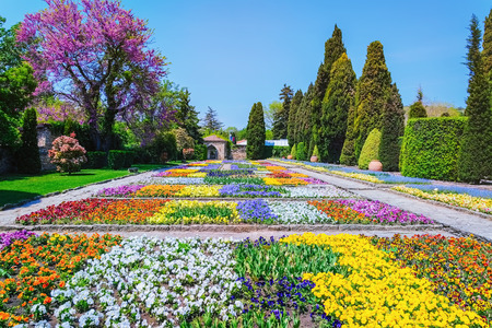 anthesis: Lot of Different Kinds of Flowers in the Garden Stock Photo