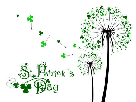 patrick day: Saint Patrick Day Dandelions Over White
