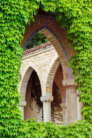 window opening: Arched Window Opening Among The Leaves Stock Photo