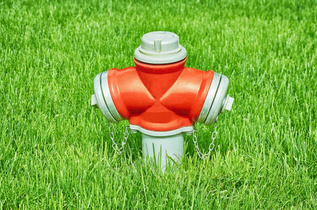borne fontaine: Fire Hydrant in the Grass