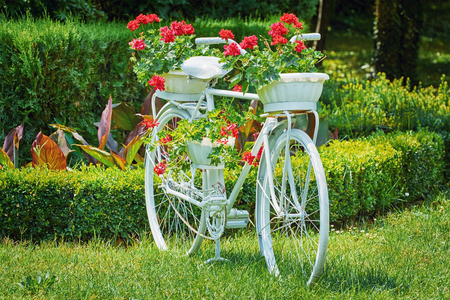 anthesis: Old White Bicycle with Flowers on the Grass
