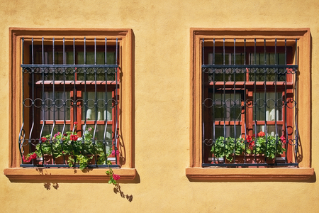 architectural exteriors: Windows with Flowers on the Yellow Wall