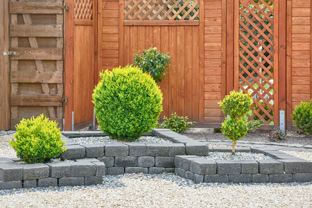 Ornamental Plants in Yard with Wooden Fence Archivio Fotografico