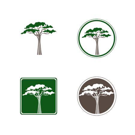 acacia: Abstract Single Acacia Tree Logo Design Collection Over White Illustration