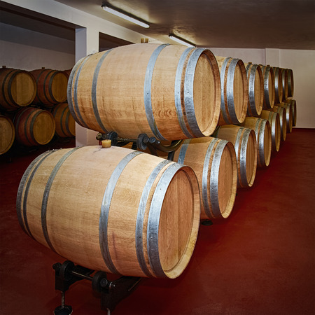 stockpile: Wooden Barrels with Wine in the Storehouse