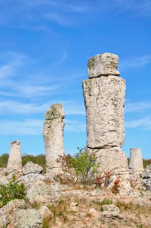 desert ecosystem: The Stone Desert (Pobiti Kamani) - Fabulous Rock Phenomenon in Varna Province, Bulgaria