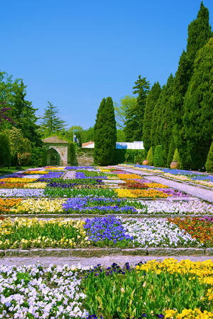 anthesis: Flowerbeds in Botanical Garden at Spring, Bulgaria Stock Photo
