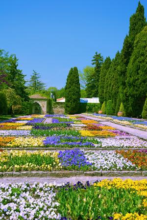 anthesis: Flowerbeds in Botanical Garden at Spring, Bulgaria Stock Photo