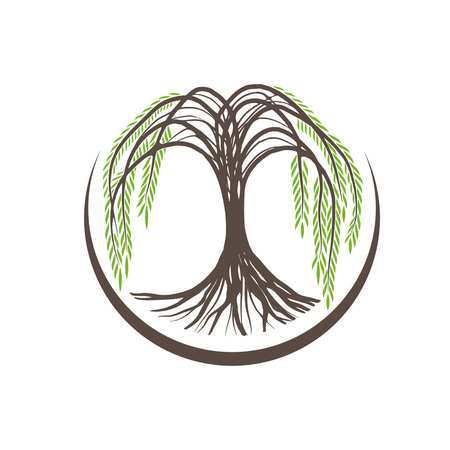 Illustration of Willow Tree Round Logo Design Banco de Imagens