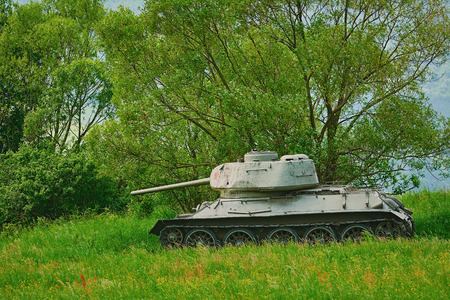 Tank of World War 2 in the Forest