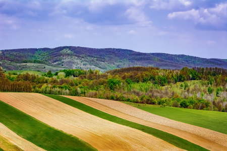 Agricultural fields in Carpathian mountains, Romania Stock Photo