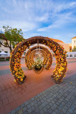 Flower arrangement on Liberty Square in Timisoara, Romania