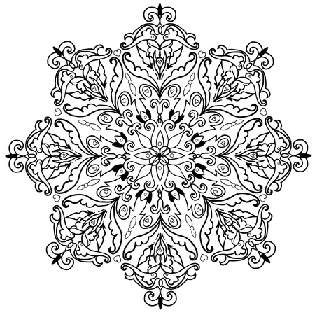 beautiful vector ornament Vector
