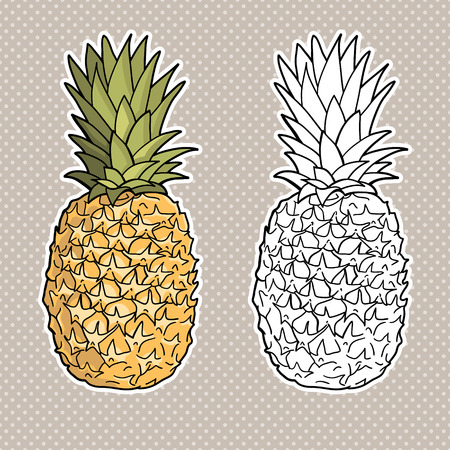 Isolated pineapples  Graphic stylized drawing  Vector illustration  Black and white Vector