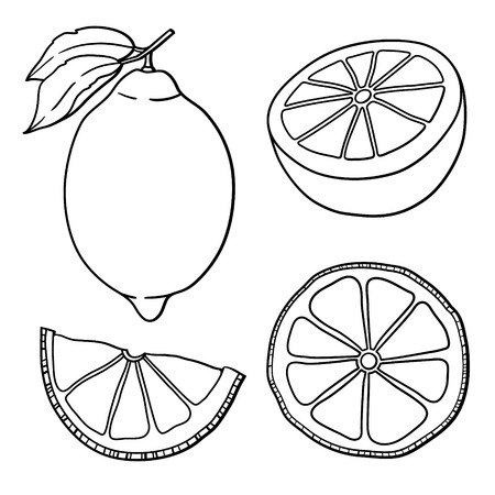Isolated lemons  Graphic stylized drawing  Vector illustration   Иллюстрация
