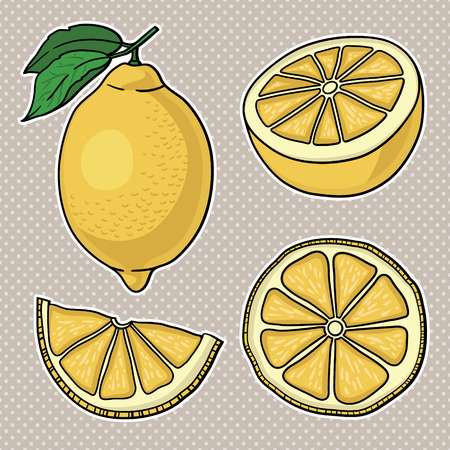 Isolated lemons  Graphic stylized drawing  Vector illustration   Vector