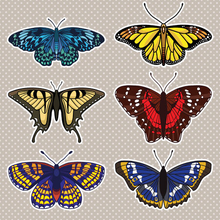 set with isolated butterflies Vector