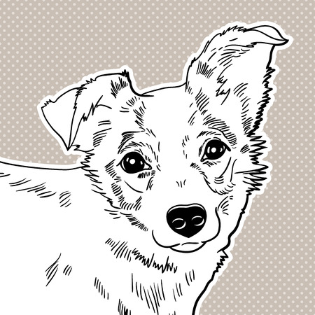 Vector illustration of the dog  black and white Vector