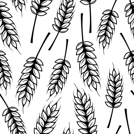 grain fields: Seamless pattern with ears of wheat Illustration