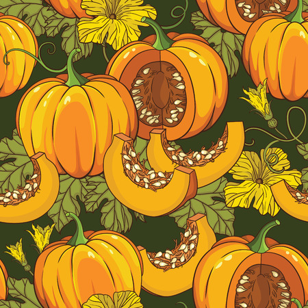 Vector botanical pattern with pumpkins, flowers and leaves Vector