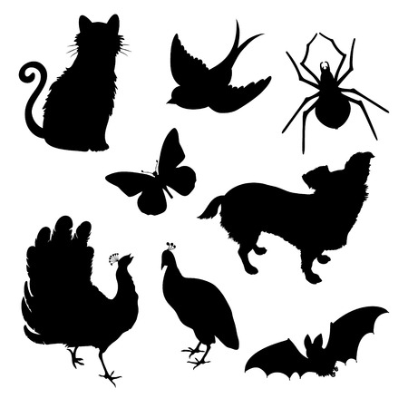 peacock butterfly: Vector set silhouettes: cat, bird, spider, butterfly, dog, peacock, bat