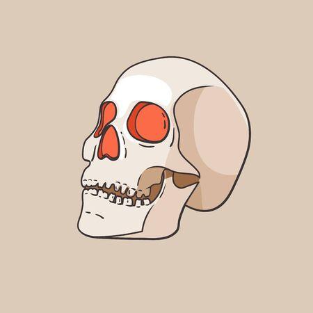 Vector skull isolated on beige background Illusztráció