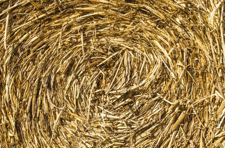 Haybale swirl background texture photo