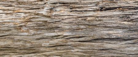 rough: Rough fencepost wood background