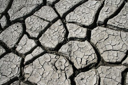 shrinkage: the dried surface is gray clay with the shrinkage cracks