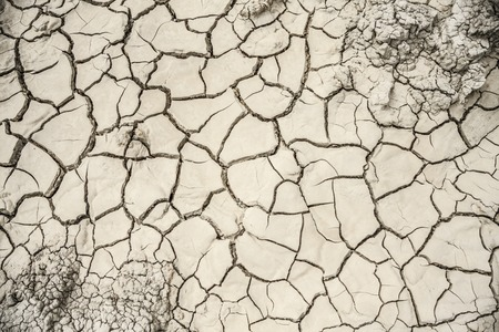 encogimiento: la superficie seca es la arcilla gris con las grietas de contracci�n