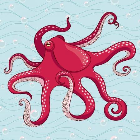 medusa: Red octopus vector illustration