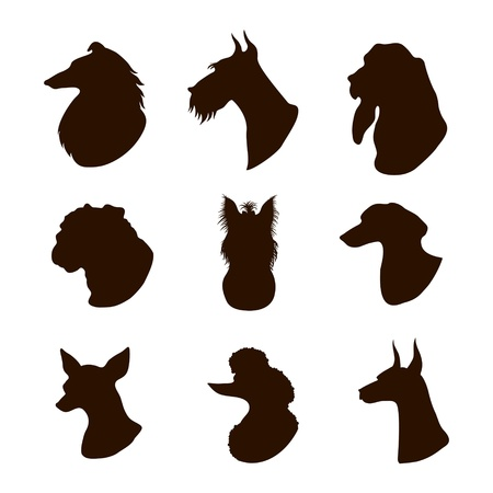 collie: Isolated dogs silhouettes
