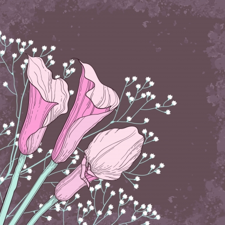 Elegant floral background with calla flowers