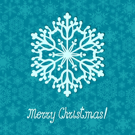 Beautiful Christmas greeting card with snowflake Vector