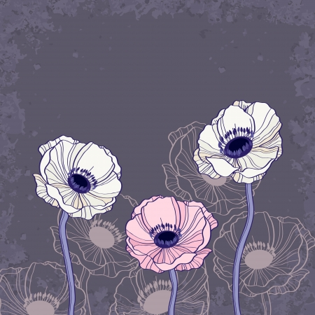 anemone: Anemone floral background vector illustration