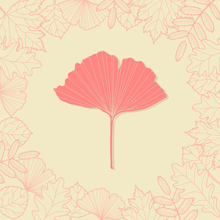 sycamore leaf: Autumn background with ginkgo leaf