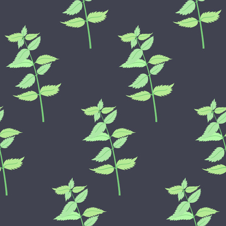 Herbs for cooking. Mint bunch vector seamless pattern Vector