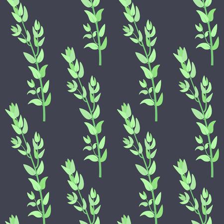 Herbs for cooking. Thyme bunch vector seamless pattern Vector