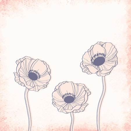 anemone: Anemone outline drawing. Elegant vector background