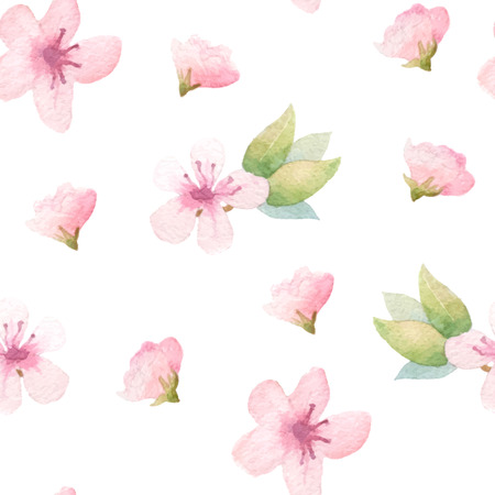 cherry pattern: Spring floral background with pink flowers. Painted apple tree blossom. Vector watercolor.